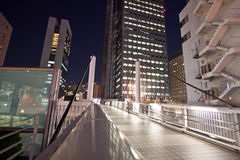 Tokyo City bridge at night Royalty Free Stock Photo