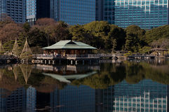Tokyo city over the water. Hama-rikyu Gardens, Tokyo city business buildings, impressive modern architectural lines and reflections against the lake Royalty Free Stock Image