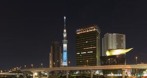 Tokyo city skyline with Skytree Tower at night Royalty Free Stock Photos