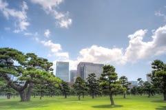 Tokyo city skyline Royalty Free Stock Photos