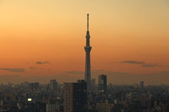 Tokyo city and sunset sky Royalty Free Stock Images