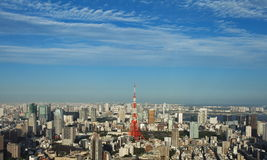 Tokyo city and Tokyo tower Stock Images