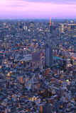 Tokyo city view Royalty Free Stock Photography