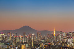 Tokyo city view with Mount Fuji Royalty Free Stock Photos