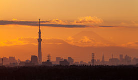 Tokyo city view with mt.fuji Royalty Free Stock Photo