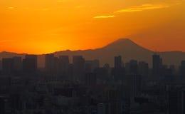 Tokyo city view at night with Mountain Fuji Royalty Free Stock Photos