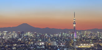 Tokyo city view and tokyo sky tree with Mt Fuji Royalty Free Stock Photo