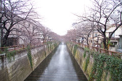 Tokyo city water channel Stock Image