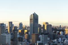 Tokyo cityspace sunset view Royalty Free Stock Photos