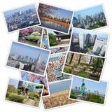 Tokyo collage Royalty Free Stock Image