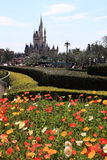 Tokyo Disneyland,Japan Royalty Free Stock Photo