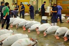 Tokyo fish market Royalty Free Stock Images