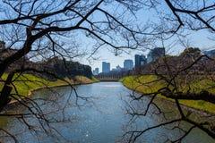 Tokyo-Fluss Stockfotografie