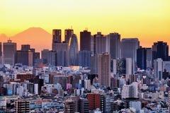 Tokyo and Fuji Stock Image