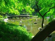Tokyo Garden Stock Images