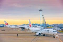 TOKYO, GIAPPONE - 26 NOVEMBRE 2018 Aereo del JAL o di Japan Airlines all'aeroporto internazionale di Haneda Di mattina cielo gial fotografia stock libera da diritti