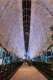Tokyo, Giappone - 26 novembre 2013: Le luci e le illuminazioni sono de Immagini Stock Libere da Diritti