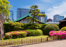 Tokyo Het Park van het Keizerpaleis royalty-vrije stock afbeeldingen