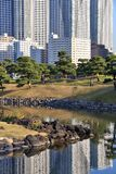 Tokyo high density. Tokyo skyline - high density residential skyscraper reflection in Hamarikyu Gardens stock photos