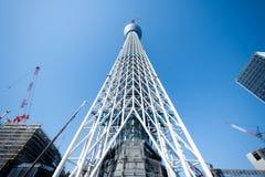 Tokyo-Himmel-Baum Lizenzfreie Stockfotos