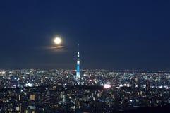 Tokyo-Himmel-Baum Stockfoto