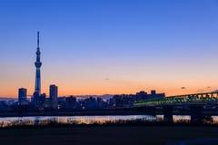 Tokyo-Himmel-Baum an der Dämmerung Stockfoto