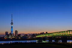 Tokyo-Himmel-Baum an der Dämmerung Lizenzfreies Stockfoto