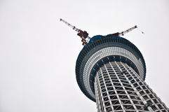 Tokyo-Himmel-Baum-Kontrollturm während des underconstruction Stockbild