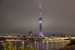 Tokyo-Himmel-Baumturm, Japan Lizenzfreies Stockbild