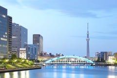Tokyo himmelträd arkivfoton