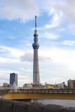 Tokyo himmelträd Royaltyfri Bild