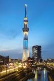 Tokyo himmelträd arkivbilder