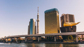 Tokyo horisont över den Sumida floden Royaltyfria Foton