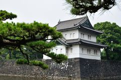 Tokyo Imperial Palace hidden behind pine trees Stock Images