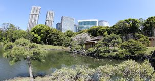 Shiodome buildings in Hamarikyu Gardens Stock Images