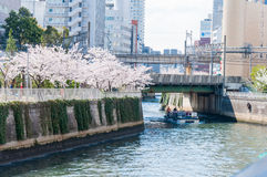 TOKYO, Japan - APRIL 5: People went outdoors on the boat at Cher Royalty Free Stock Images
