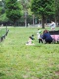 Tokyo, Japan - April 22, 2018 : children sit in park. Children sit in park look back stock images