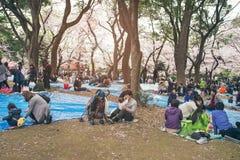 TOKYO JAPAN - APRIL 1ST, 2016: Den Tokyo folkmassan som tycker om festival för körsbärsröda blomningar i Ueno, parkerar Royaltyfri Foto