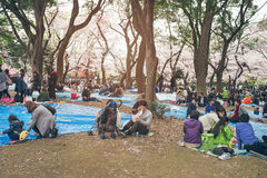 TOKYO, JAPAN - APRIL 1ST, 2016: Tokyo Crowd enjoying Cherry blossoms festival in Ueno Park Royalty Free Stock Photo