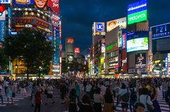 Crowd of people on Shubuya crossing at night Stock Images