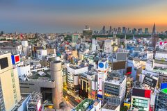 Tokyo, Japan city skyline over Shibuya Ward with the Shinjuku Ward skyline in the distance. At dusk royalty free stock photography