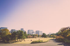 Tokyo, Japan cityscape ( Filtered image processed vintage effect Stock Photo