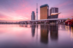Tokyo, Japan at Dawn. Tokyo, Japan skyline on the Sumida River at dawn Stock Photography