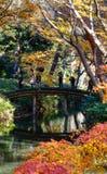 Autumn garden in Tokyo, Japan stock image