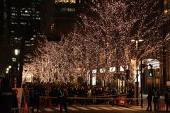 Tokyo, Japan - December 28, 2017: Japanse mensen en toeristen die in lijn wachten om Marunouchi-Verlichting 2017 in te gaan Stock Foto