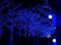 TOKYO, JAPAN - December 28, 2017: Shibuya Blue Tunnel or Ao no Dokutsu Illumination is being held on Shibuya Park Street stock image