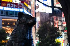 Tight shot of the statue of Hachiko dog in Shibuya Crossing with bright colorful billboards behind stock photo