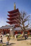 Tokyo, Japan, Five Story Pagoda stock images