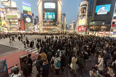 TOKYO, JAPAN - JANUARY 28, 2017: Shibuya District in Tokyo. Famous and busiest intersection in the world, Japan. Shibuya Crossing stock photography