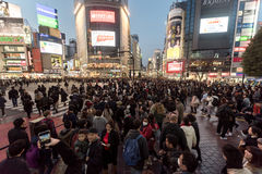 TOKYO, JAPAN - JANUARY 28, 2017: Shibuya District in Tokyo. Famous and busiest intersection in the world, Japan. Shibuya Crossing. Shibuya District in Tokyo Stock Image